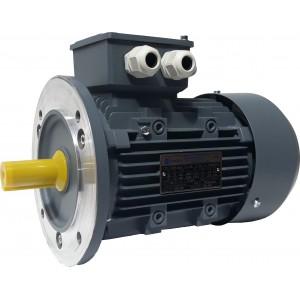 Elektros variklis OMT4 90L-4 1.5kW 4P B5