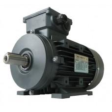 Elektros variklis OMT4 100L1-4 2.2kW 4P B3