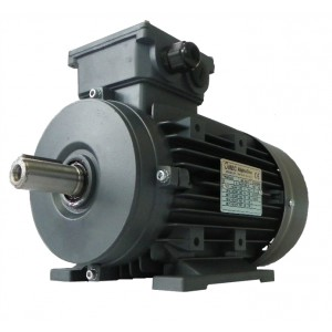 Elektros variklis OMT4 90S-4 1.1kW 4P B3